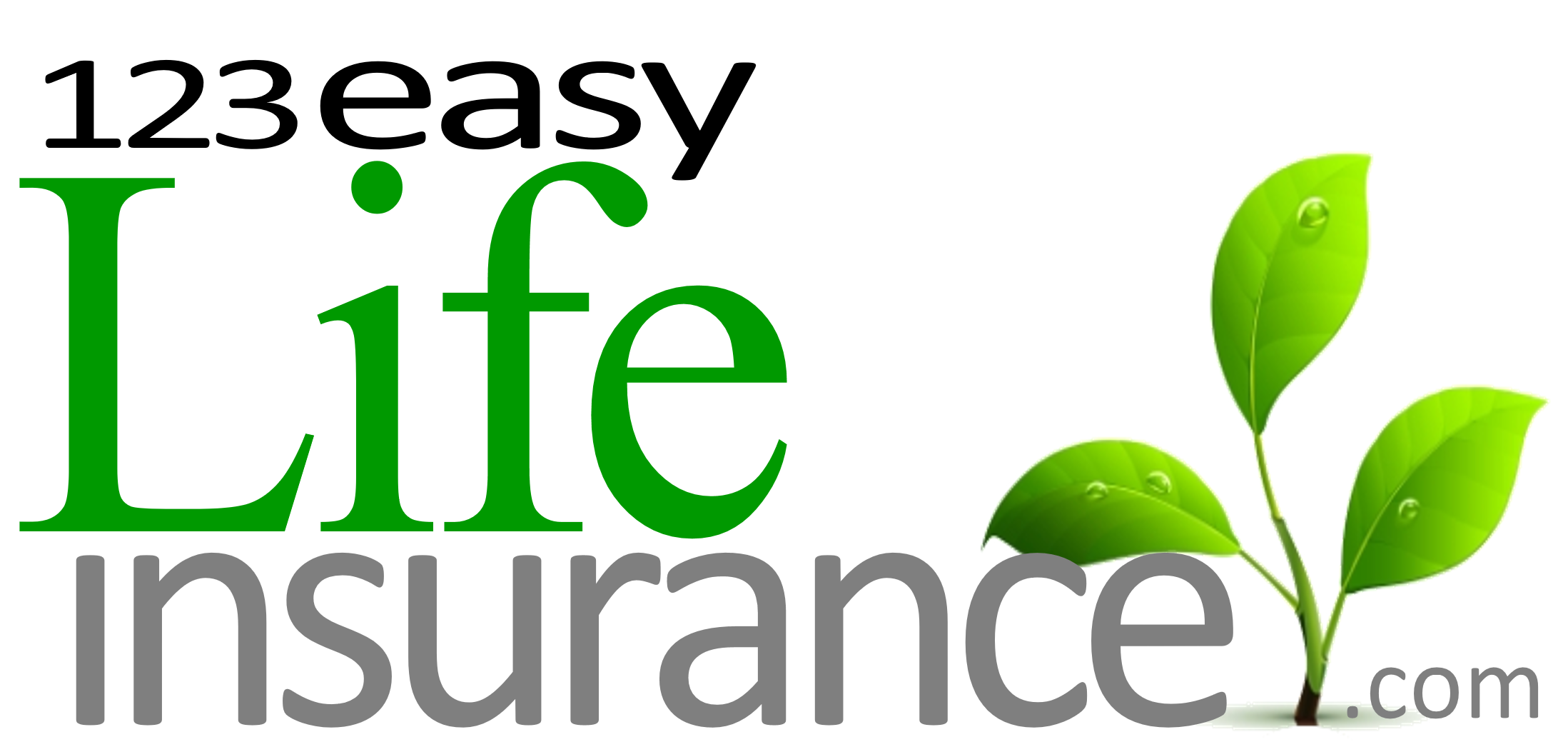 Select Quote Term Life 123Easylife  Termlife Insurance For Those That Need $1M Or More